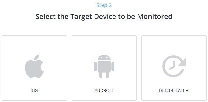 2 step mspy install
